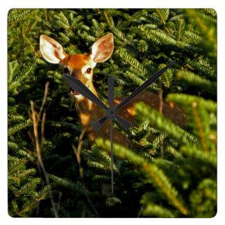Fawn in Pine Trees Clock