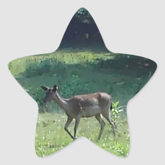 Fawn in the Meadow Star Stickers