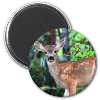 Fawn 2 Inch Round Magnet
