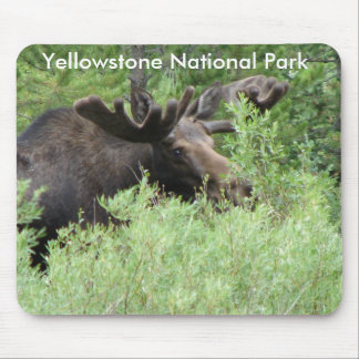 Fawn Pass, North Yellowstone in Montana (8), Ye... Mouse Pad