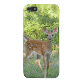 Fawn Photo Case for iPhone