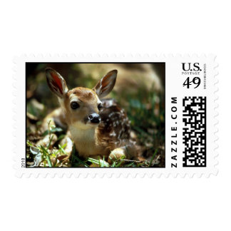fawn postage