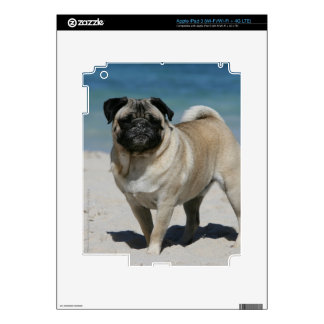 Fawn Pug at the Beach Decals For iPad 3