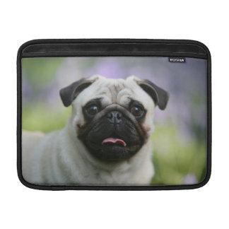Fawn Pug on Alert MacBook Sleeves