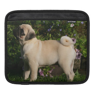 Fawn Pug Profile Sleeves For iPads