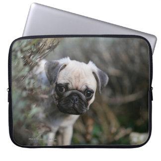 Fawn Pug Puppy Headshot Laptop Sleeve
