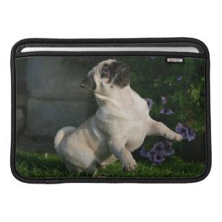 Fawn Pug Puppy MacBook Air Sleeves