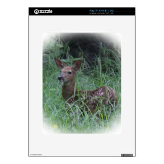 Fawn Decals For The iPad