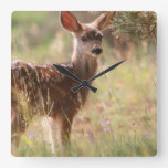 FAWN SQUARE WALL CLOCK