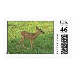 fawn stamps