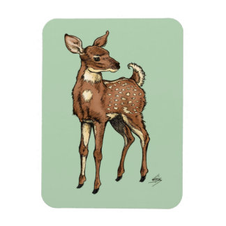 Fawn with Mint background Rectangular Photo Magnet
