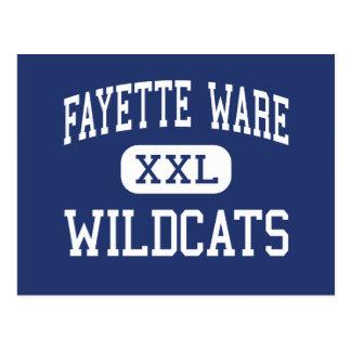 Fayette Ware - Wildcats - Somerville Postcards