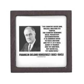 FDR Country Needs Bold Persistent Experimentation Premium Jewelry Box
