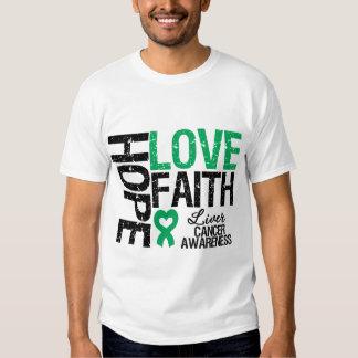 Fe del amor de la esperanza del cáncer de hígado playera
