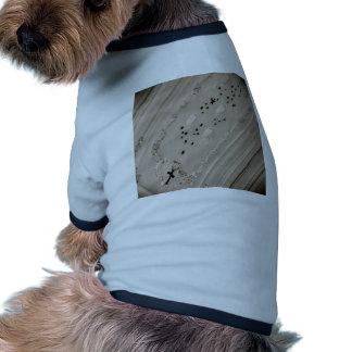 Fe Camiseta De Mascota