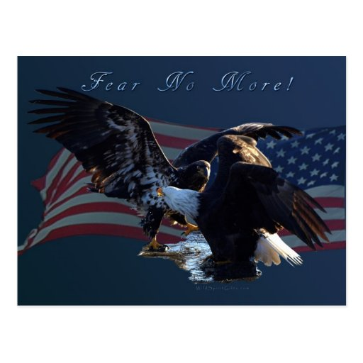 """Fear No More!"" Eagle/US Flag Gift Post Card"