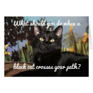 Fear Of Black Cats Card