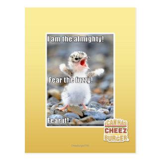 Fear the Fuzzy! Postcard