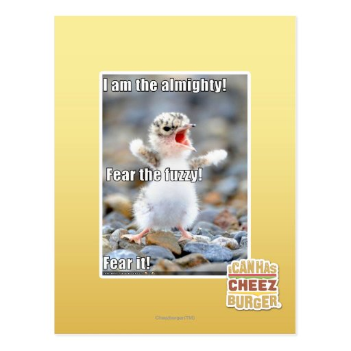 Fear the Fuzzy! Postcards