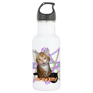 Fear the kitty stainless steel water bottle