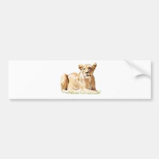Fearsome lioness bumper sticker