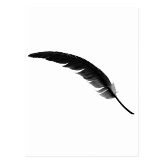 feather3 postcard