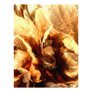 Feather Duster Close Up Flyer