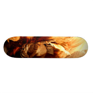 Feather Duster Close Up Skateboard