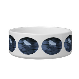 feather floating on blue water bowl