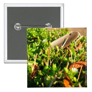 Feather in the Grass 2 Inch Square Button