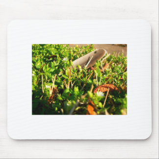 Feather in the Grass Mouse Pad