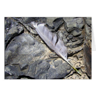 Feather on Rock Card
