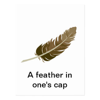 Feather Postcard