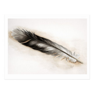 Feather Postcard