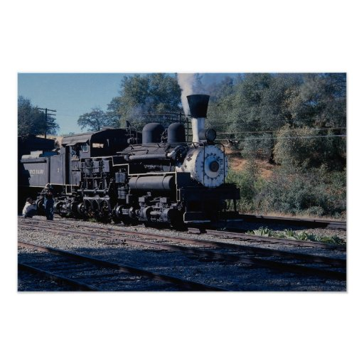 Feather River Ry, Shay locomotive Print
