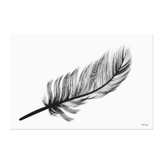feather series stretched canvas print