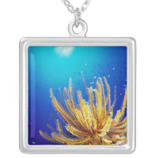 Feather star square pendant necklace