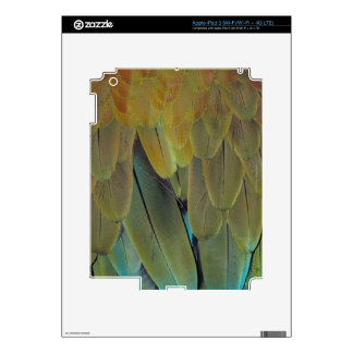 Feather surface skin for iPad 3