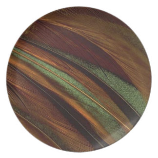 FEATHER SWIRL BY AES DINNER PLATE