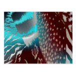 Feather Texture Template Postcard