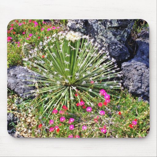 Feather-tipped Succulent Mouse Pad
