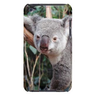 Featherdale Wildlife Park, Koala Bears iPod Case-Mate Cases
