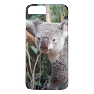 Featherdale Wildlife Park, Koala Bears iPhone 7 Plus Case