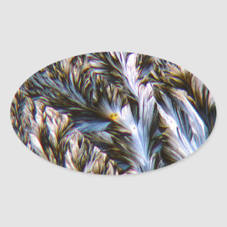 feathered crystals, paracetamol under a microscope oval sticker