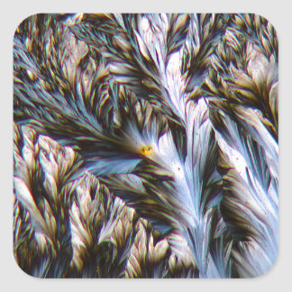 feathered crystals, paracetamol under a microscope square sticker