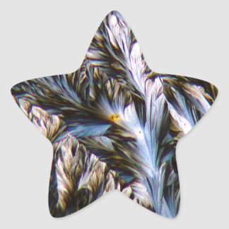 feathered crystals, paracetamol under a microscope star sticker