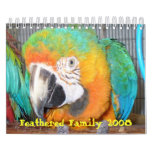 Feathered Family 2008 Calendar, Small