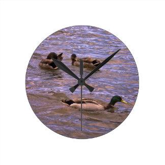 Feathered Flirtations Wall Clocks