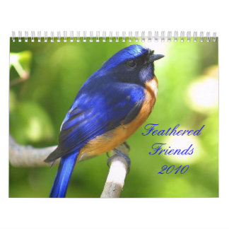 Feathered Friends 2010 Calendar