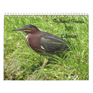 Feathered Friends 2017 (Encore) Calendar